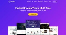 wordpress-theme-für-bloggestaltung-mit-verschiedenen-Elementen-und-Funktionen