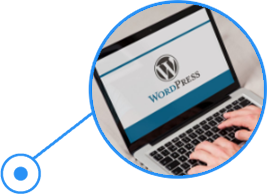 SeekaHost-bietet-Wordpress-hosting